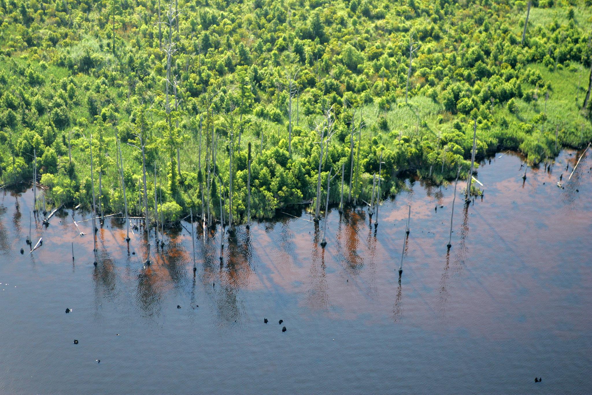 EPA revives climate change website, adds 'indicators' data - Coastal Review Online