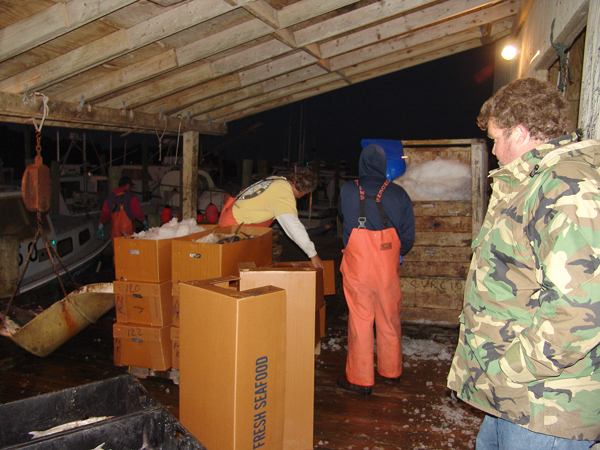 Robert Harrison, right, oversees the packing of his boat, the F/V Prowler's hook-and-line catch of King Mackerel in Hatteras Village in November 2007, the main fall fishery on the Outer Banks for hook-and-line boats. Photo: Vicki Harrison