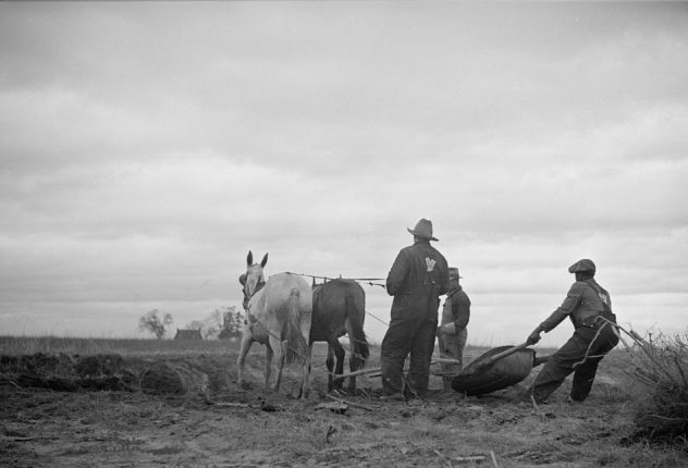 Getting ready for spring planting, probably Halifax County, N.C, 1934. Photo by Carl Mydans/U.S. Resettlement Administration. Courtesy, Library of Congress