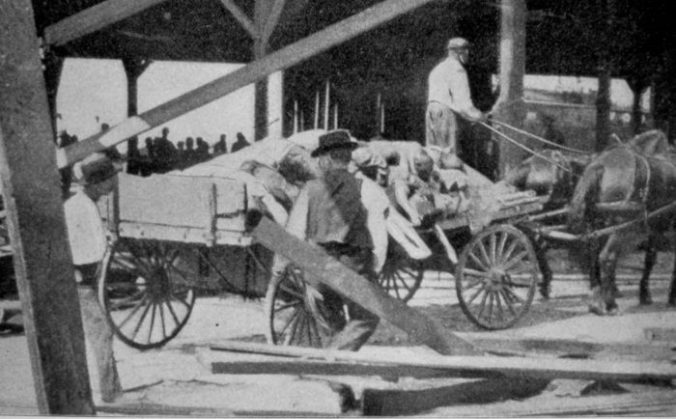 The Galveston hurricane drowned so many people that relief workers loaded many of the corpses onto carts for burial at sea. Courtesy, NOAA Photo Library