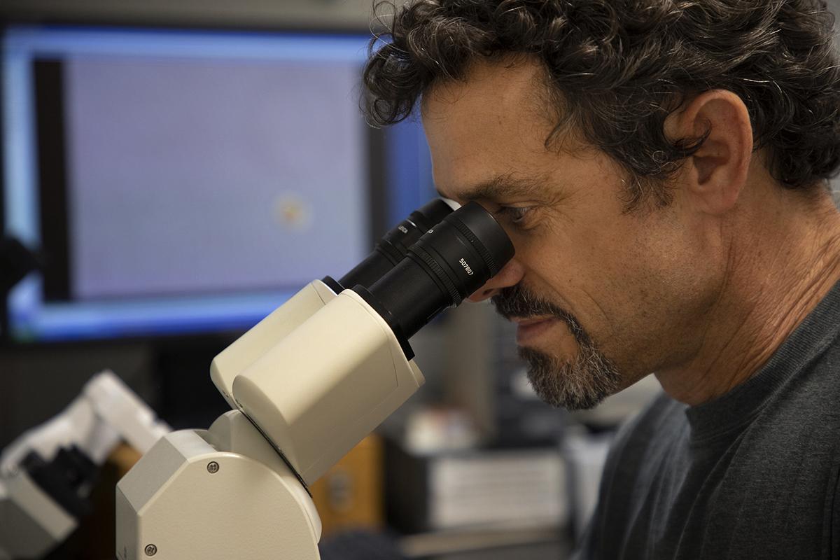 Dr. Nathan Hall. Photo: UNC