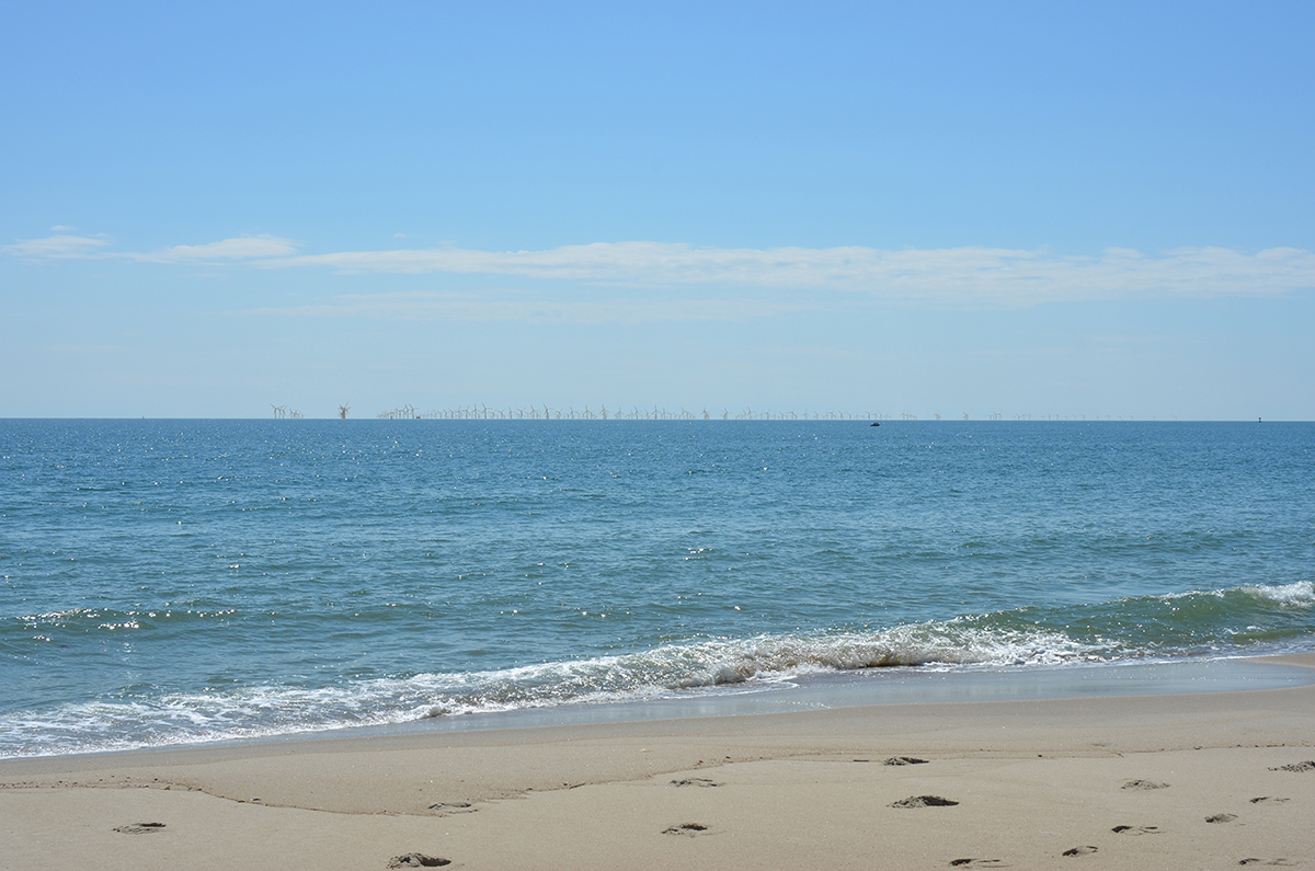 A simulated late-afternoon view from Bald Head Island depicts how a 200-turbine wind facility in the Wilmington West WEA would appear 10 nautical miles offshore. Image: BOEM