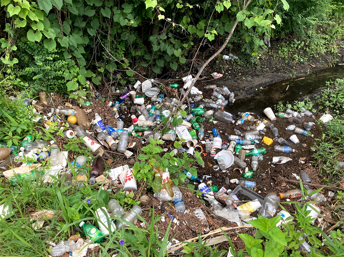 Garbage collects in a ditch off Front Street in Wilmington. Photo courtesy of Cape Fear River Watch